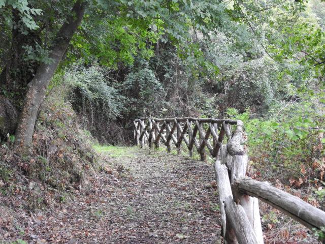 Sentiero naturalistico - vandresti, her ved Librizzi. Foto: KirstenSoele